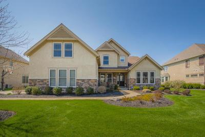 Dublin Single Family Home Contingent Finance And Inspect: 6748 Brodie Boulevard