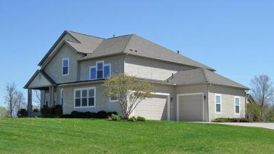 Single Family Home For Sale: 112 Blackstone Court
