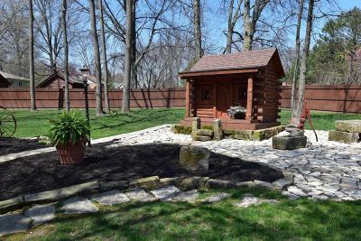 Pataskala Single Family Home For Sale: 590 Citation Drive SW