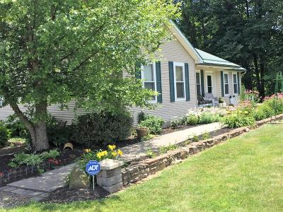 Etna Single Family Home For Sale: 10547 Lynns Road SW