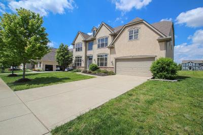 Pickerington Single Family Home Contingent Finance And Inspect: 8738 Birch Brook Loop NW