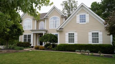 Westerville Single Family Home For Sale: 5609 Mosaic Way