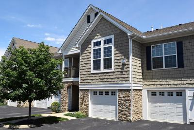 Condo Contingent Finance And Inspect: 5078 Calais Drive