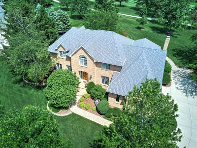 Delaware County, Franklin County, Union County Single Family Home Contingent Finance And Inspect: 6821 Temperance Point Place