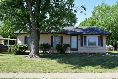 Single Family Home For Sale: 96 Shaffer Drive