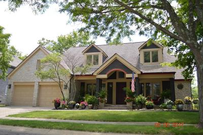 Powell Single Family Home Contingent Finance And Inspect: 225 Glen Village Court