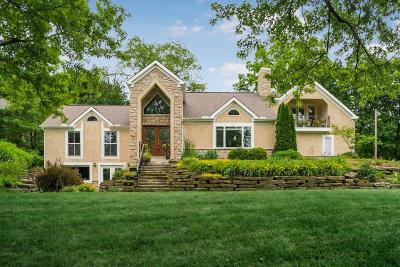 Franklin County, Delaware County, Fairfield County, Hocking County, Licking County, Madison County, Morrow County, Perry County, Pickaway County, Union County Single Family Home For Sale: 10669 Riverside Drive