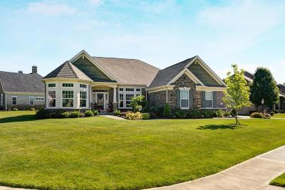 Blacklick Single Family Home Contingent Finance And Inspect: 7184 Maple Leaf Circle S