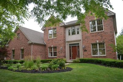 Blacklick Single Family Home For Sale: 1204 Poppy Hills Drive