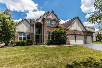 Pickerington Single Family Home For Sale: 665 Theron Drive