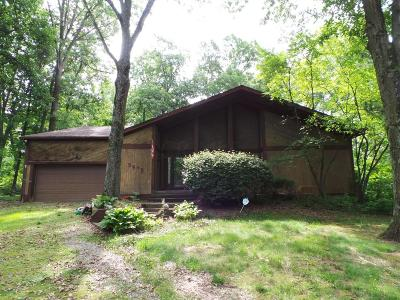 Single Family Home For Sale: 5295 Red Bank Road