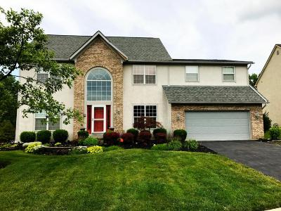 Blacklick Single Family Home For Sale: 6592 Estate View Drive N
