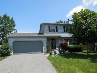 Worthington Single Family Home Contingent Finance And Inspect: 972 Green Trails Court