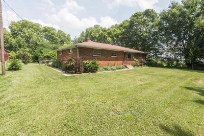 Canal Winchester Single Family Home For Sale: 7200 Long Road