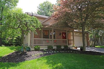 Powell Single Family Home For Sale: 8872 Cornwallis Court
