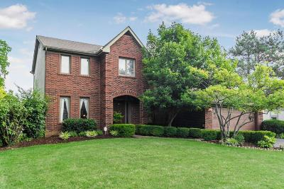 Dublin Single Family Home For Sale: 5060 Donegal Cliffs Drive