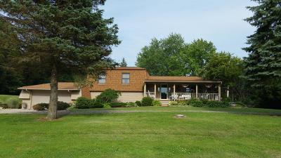 Pataskala Single Family Home For Sale: 4461 Hazelton Etna Road SW