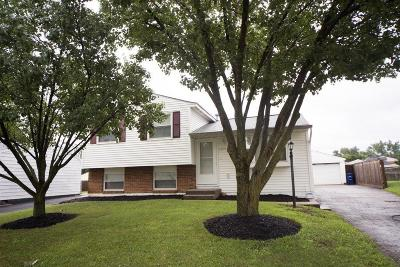 Columbus Single Family Home For Sale: 3091 Valleywood Drive