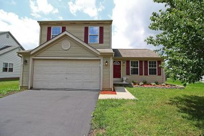 Single Family Home For Sale: 507 Greenhill Drive