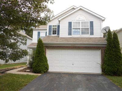 Hilliard Single Family Home For Sale: 5800 Brinkwater Boulevard