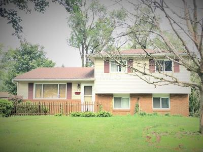 Single Family Home For Sale: 3488 Farley Drive