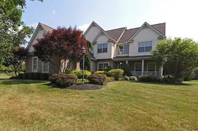 Dublin Single Family Home Contingent Finance And Inspect: 8034 Summerhouse Drive W