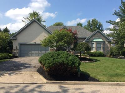 Dublin Single Family Home For Sale: 5680 Loch Broom Circle