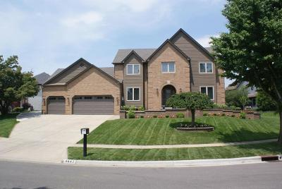 Dublin Single Family Home Contingent Finance And Inspect: 4647 Bridle Path Lane