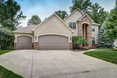 Powell Single Family Home For Sale: 8810 Coldwater Drive