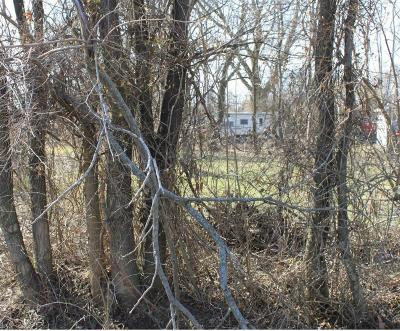 Columbus Residential Lots & Land For Sale: Dewey Avenue
