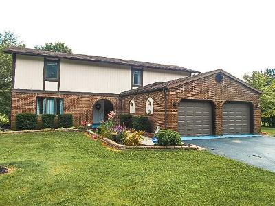 Galloway Single Family Home For Sale: 6463 Royalton Drive