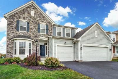 Pickerington Single Family Home For Sale: 132 Balsam Drive
