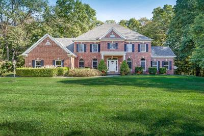 Single Family Home For Sale: 205 Lincliff Drive