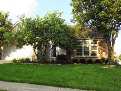 Gahanna Single Family Home For Sale: 4054 Pathfield Drive