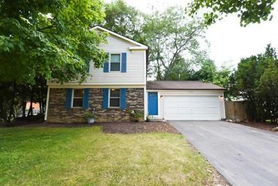 Powell Single Family Home Contingent Finance And Inspect: 8163 Saddle Run Road