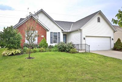 Westerville Single Family Home Contingent Finance And Inspect: 5529 Benpatrick Court
