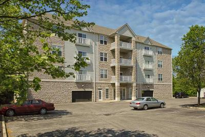 Condo Contingent Finance And Inspect: 2245 Riverside Drive #203
