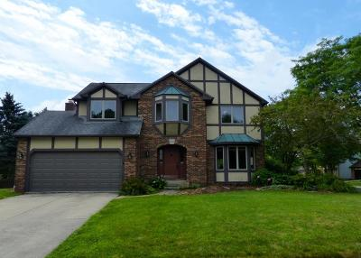 Dublin Single Family Home Contingent Finance And Inspect: 5625 Parker Hill Lane