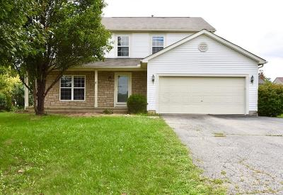 Hilliard Single Family Home For Sale: 2850 Frazell Road