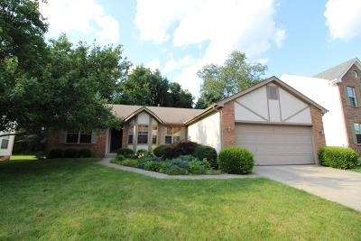 Single Family Home Contingent Finance And Inspect: 4816 Westerville Run Drive