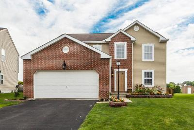 Single Family Home For Sale: 216 Autumn Leaves Way