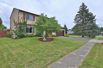 Grove City Single Family Home Contingent Finance And Inspect: 1962 Limetree Court