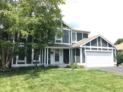 Single Family Home For Sale: 5264 Goldfield Drive