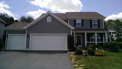 Columbus Single Family Home For Sale: 4439 Butler Farms Drive