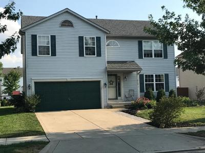 Delaware Single Family Home For Sale: 912 Wallace Drive