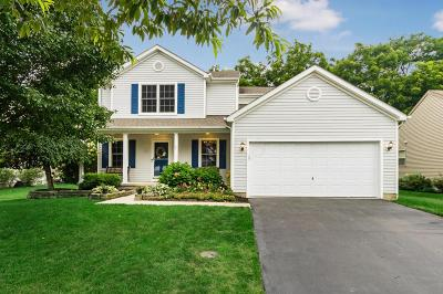 Delaware Single Family Home For Sale: 118 Sapphire Ice Drive