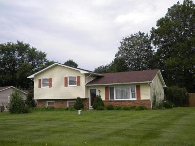 Single Family Home For Sale: 1171 Gender Road
