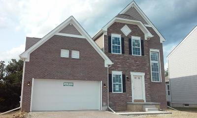 Johnstown Single Family Home For Sale: 105 Butternut Cove Place #292