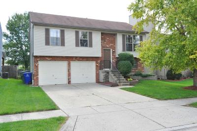 Single Family Home Contingent Finance And Inspect: 3561 Rocky Road