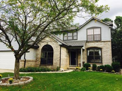 Dublin Single Family Home Contingent Finance And Inspect: 8592 Heritage Woods Court